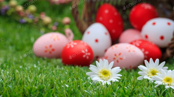 Easter concept. White daisies on green grass, blurred easter eggs background.