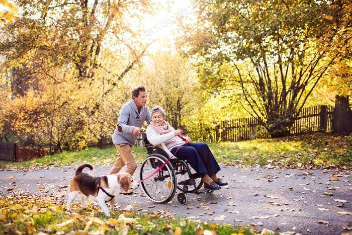 Senior man, woman in wheelchair and dog in autumn nature.