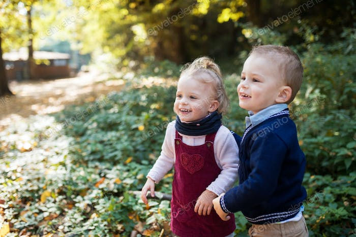 Twin toddler sibling boy and girl standing in autumn forest. Copy space