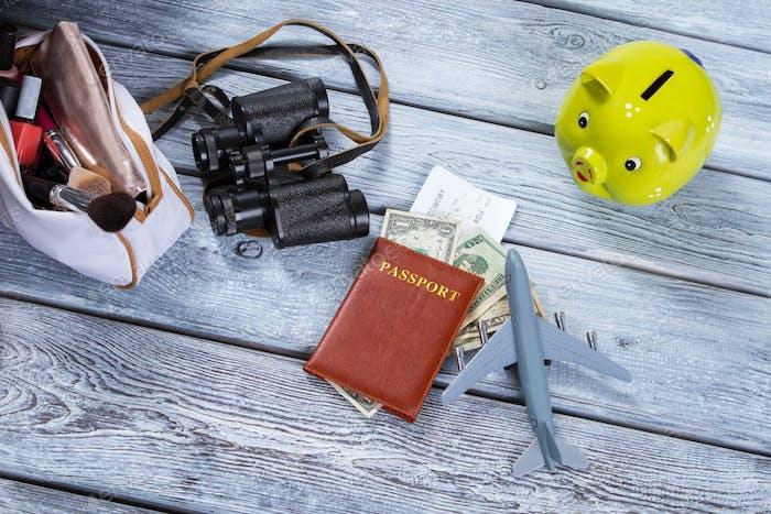 Паспорт и игрушечный самолет