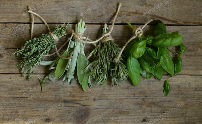 Green Fragrant Herbs