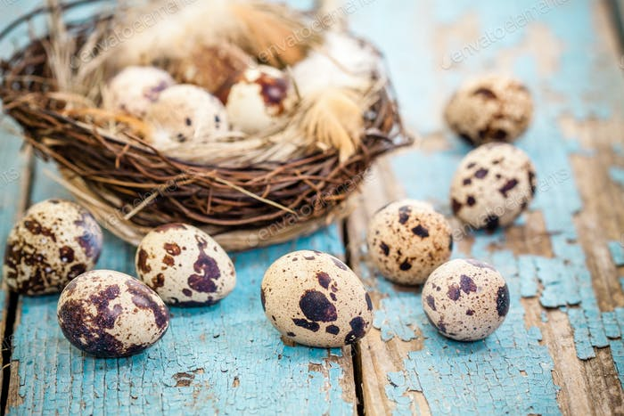 quail eggs in a nest on a rustic background