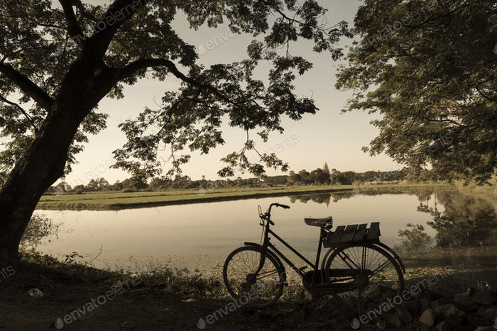 Bicycles with rural field