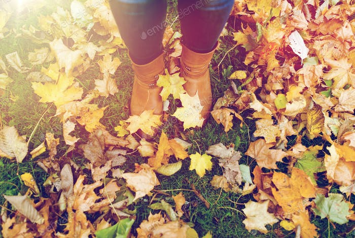 female feet in boots and autumn leaves
