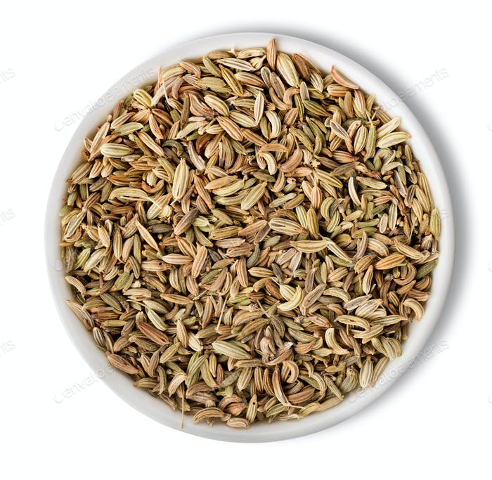Fennel  in plate isolated