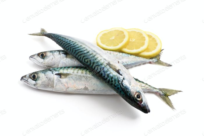 three mackerel with lemon
