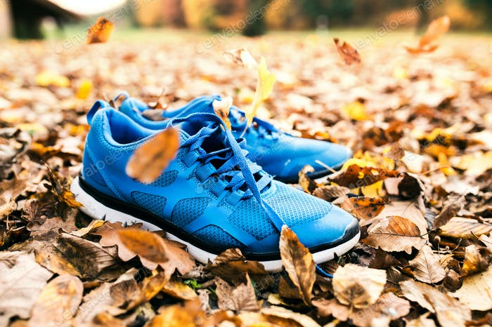 Blue trainers on colorful leaves on the ground.