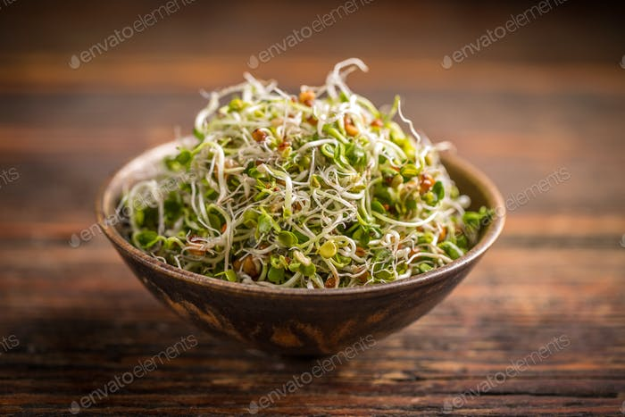 Fresh sprouted seeds