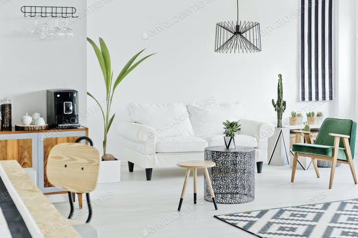 Multifunctional flat in nordic style