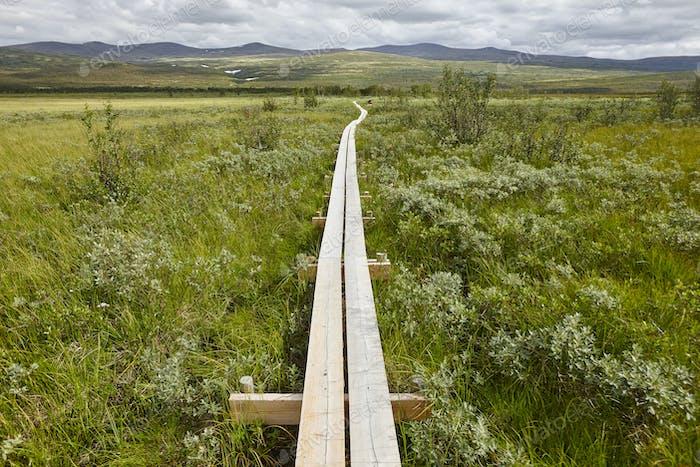 Norway. Wooden pathway in Dovrefjell-Sunndalsfjella park. Fokstumyra wetland. Horizontal