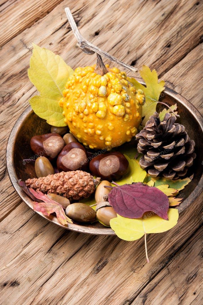 symbolic autumn still life
