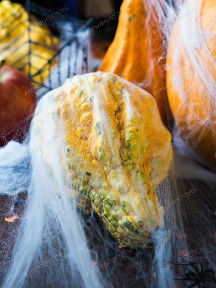 Halloween squash with spider net