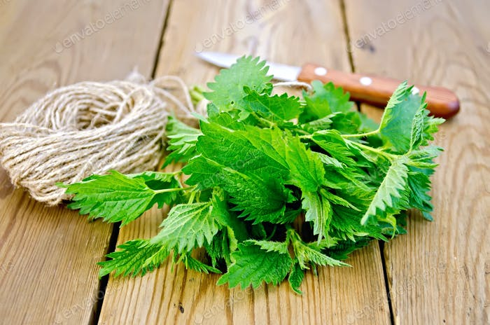 Nettle with a knife and twine on board