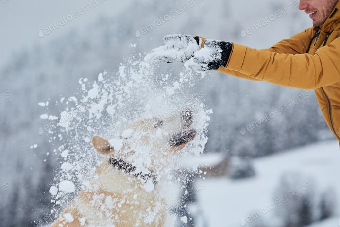 Man with dog playing in snow