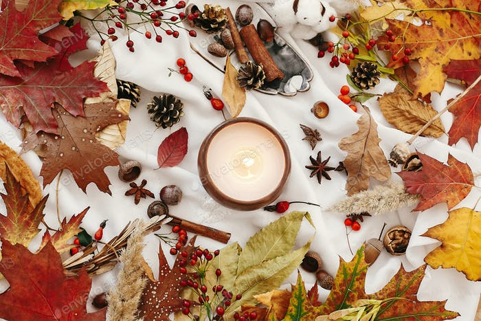 Hello autumn flat lay, cozy inspirational image. Hygge lifestyle. Candle with berries, fall leaves