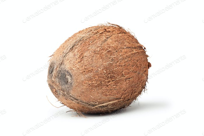 Fresh Coconut Isolated