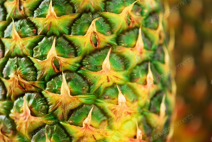 Texture of pineapple skin. Copy space. Beauty and diet concept. Macro shoot of pineapple fruit