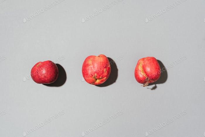 Hässliche Früchte Konzept. Bio rote Äpfel auf grauem Hintergrund. Das Konzept der Ökologie, nicht plastisch