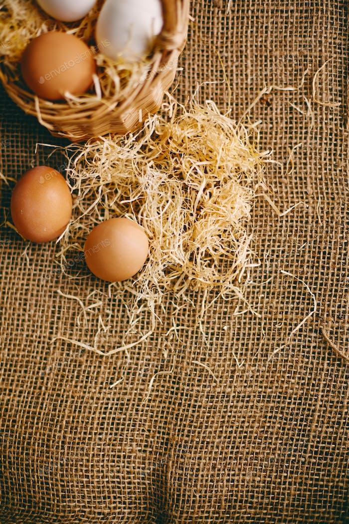 Eggs on hessian