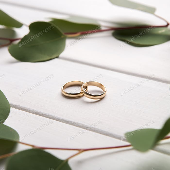 Creative composition of wedding rings and green leaves