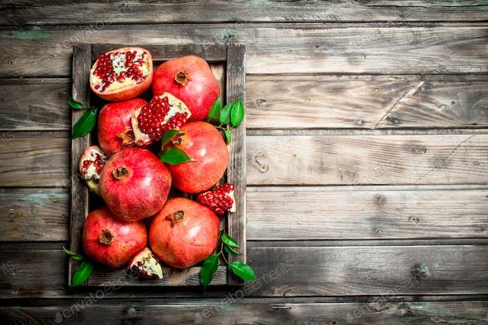 Saftige Granatäpfel auf dem Tablett.