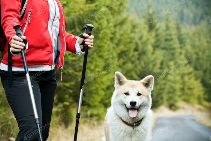 Nordic Walking with dog