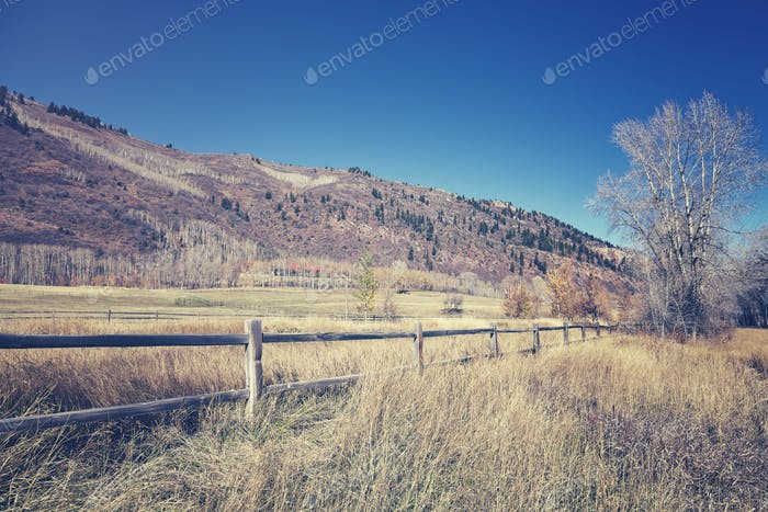 Countryside landscape with a wooden post.