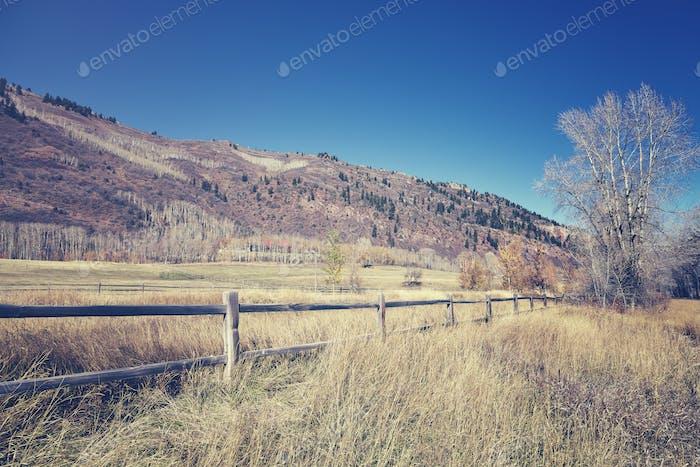 Сельская местность пейзаж с деревянной почтой.