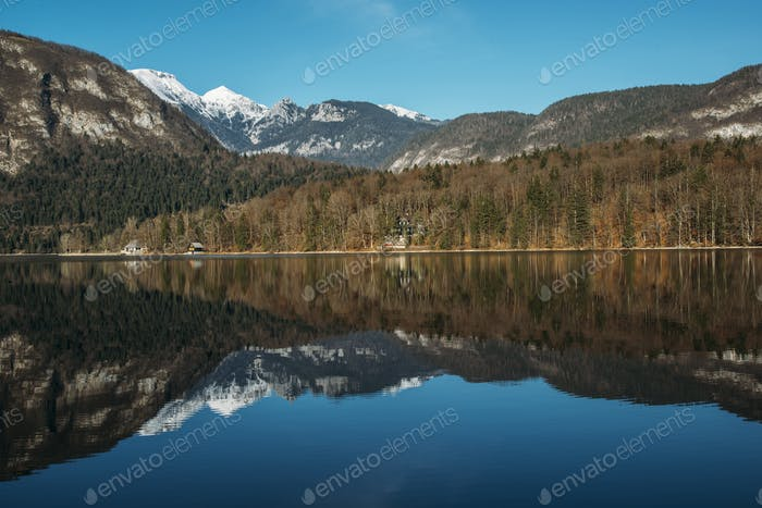 Beautiful forest reflection in the Bohinj lake with surrounding mountains
