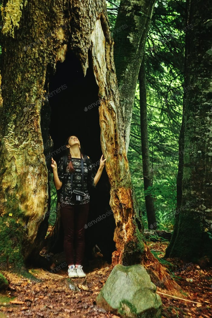 stylish woman hipster traveler looking at amazing tree