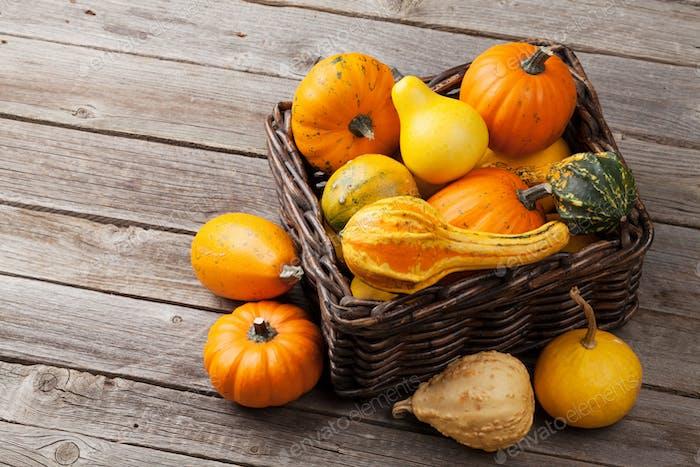 Herbstkürbisse auf Holztisch