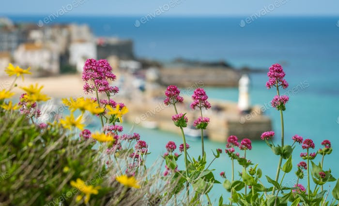 Colorful flowers and St Ives