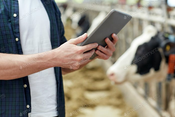 Thumbnail for man with tablet pc and cows on dairy farm