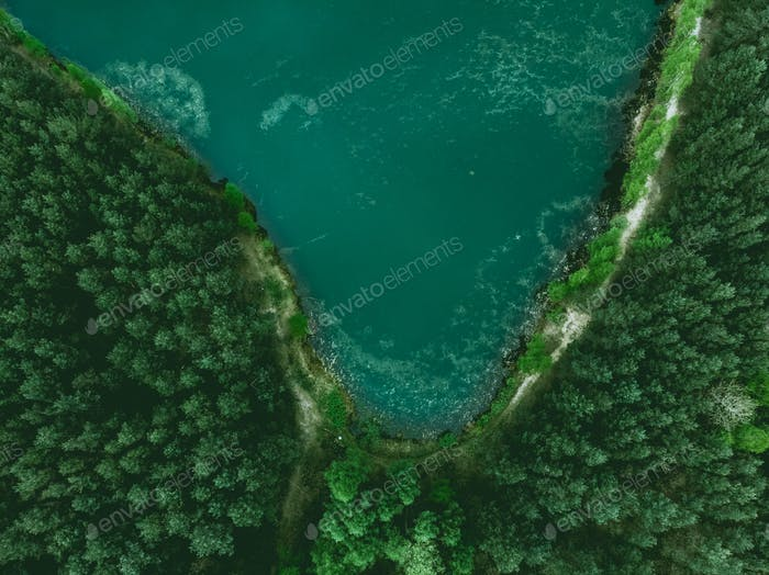 Pond and forest border from above