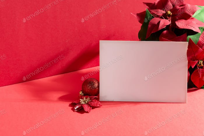Greeting mock-up card with Christmas flower Poinsettias