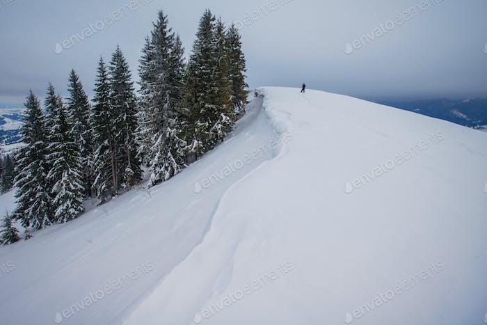 Carpathian winter mountains