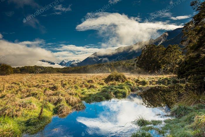 Spiegelseen mit Reflexion der Earl Mountains, Fjordland Nation