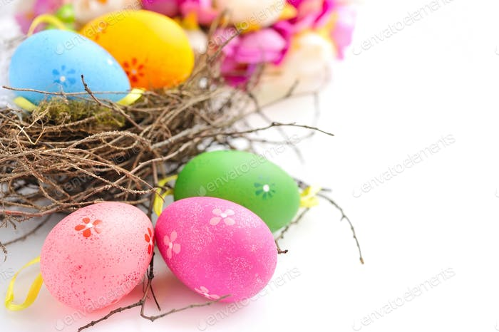 Colorful easter eggs in nest on a white background