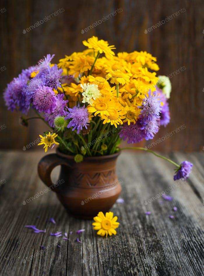 Blumenstrauß von Wildblumen (Anthemis tinctoria und Knautia arvensis)