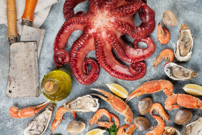 Seafood. Octopus, oysters, lobster, shrimps