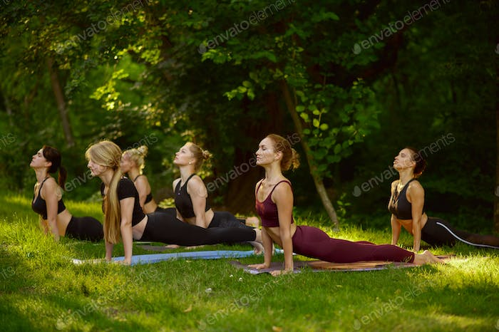 Slim women doing stretching exercise, group yoga