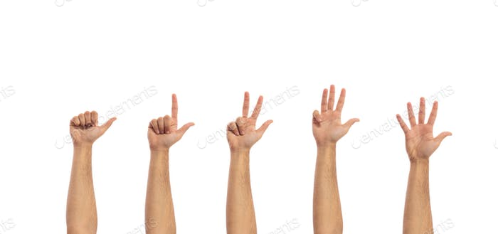 Counting male hands isolated on white background