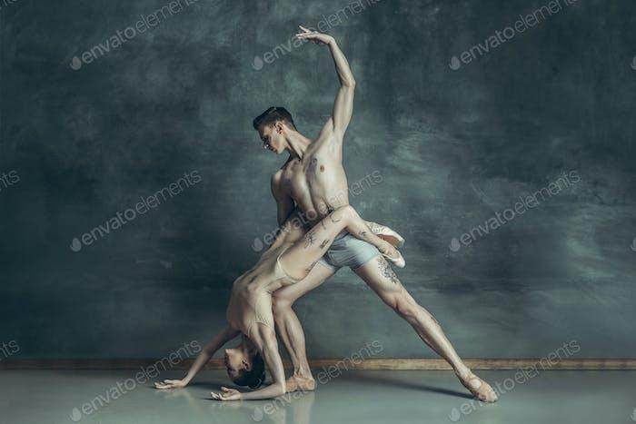 Die jungen modernen Balletttänzer posieren auf grauem Studio-Hintergrund