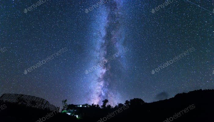Milky Way and tree. Amazing rural scene with starry sky