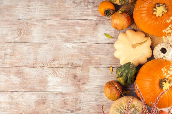 Autumn thanksgiving moody background with squash