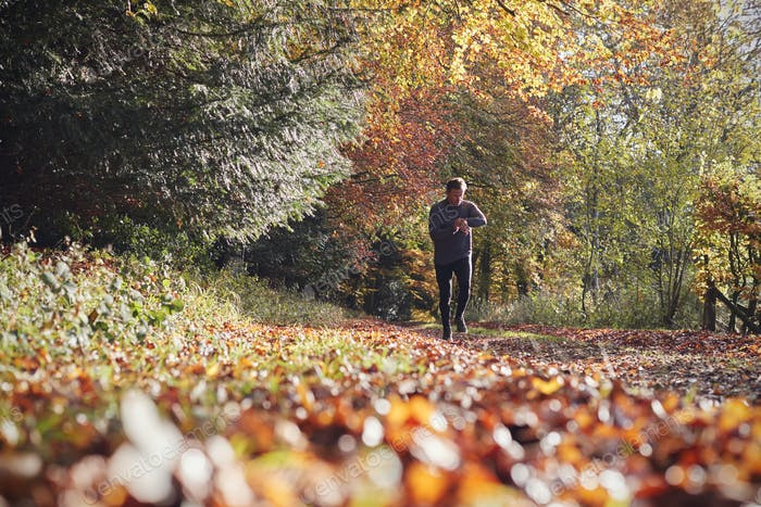 Mature Man On Autumn Run In Woods Checks Activity Tracker