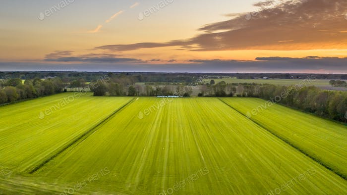 Aerial view of agricultural meadow landscape