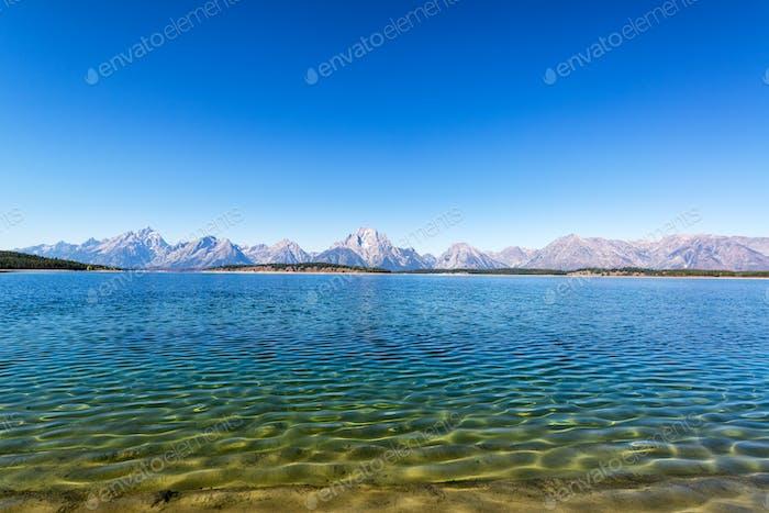 Jackson Lake Lakeshore View
