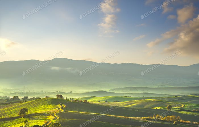 Tuscany countryside misty panorama, rolling hills and green fields on sunset. Pisa, Italy