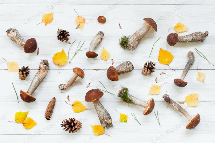 Autumn Pattern of Mushrooms
